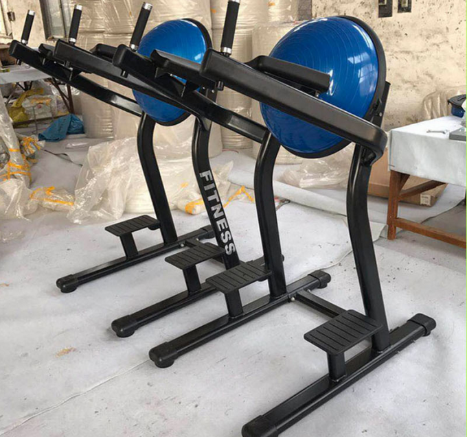 Commercial Vertical Knee Raise Machine , Heavy Duty Home Aerobic Equipment