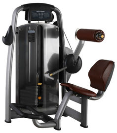 China 189kg Back Extension Machine , Pu Leather Strength And Fitness Equipment supplier