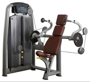 China Triceps Extension Strength Fitness Equipment Seated Press Down Gym Machine supplier