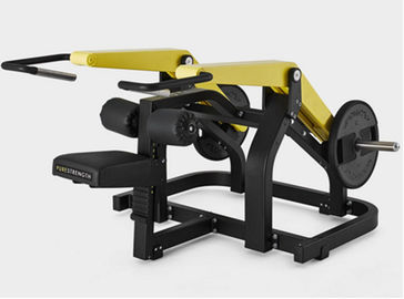 China Seated Dip Hammer Strength Gym Fitness Equipment / Plate Loaded Gym Equipment supplier