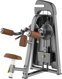 China Lateral Raise Machine Physical Fitness Equipment With Aluminium Handlebar supplier