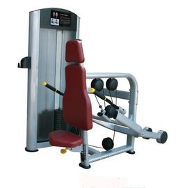 China Elliptical Trainer Health Physical Fitness Equipment / Triceps Extension Body Exercise Machine supplier