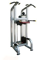 China User Friendly Seated Row Machine Exercise Equipment , Indoor Chin Dip Assist Machine supplier