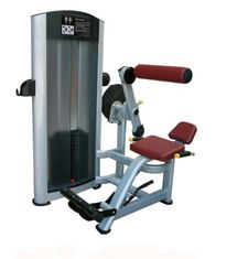 China Environmental Friendly Commercial Exercise Equipment , Aluminium Handle Back Extension Bench supplier