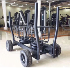 China TANK Commercial Elliptical Fitness Equipment / Power Curve Resistance Trainer supplier