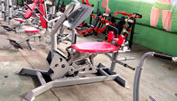 China Hoist Plate Loaded Fitness Equipment , Free Weight Gym Equipment Color Custom factory