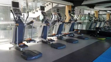 China Adjustable Height Elliptical Fitness Equipment with Chromed Seat Post And Handlebar Post factory
