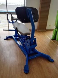 China Hoist Plate Loaded Gym Equipment Free Weight Gym Equipment Strength Exercise distributor