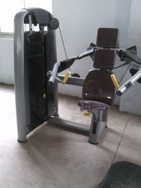 China Gym Strength Fitness Equipment Biceps Curl Machine Strength Training distributor