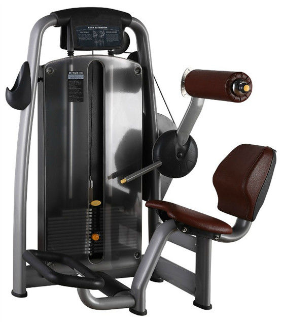 189kg Back Extension Machine , Pu Leather Strength And Fitness Equipment